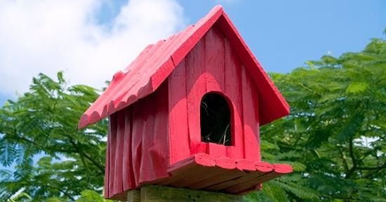 Birdhouse-Red